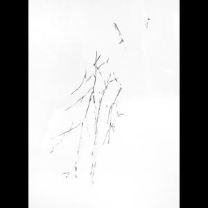 23. Art divinatoire, 2013-2016- Livia Gnos