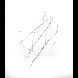 24. Art divinatoire, 2013-2016- Livia Gnos