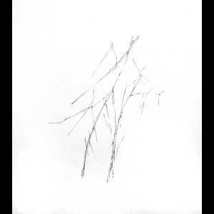 26. Art divinatoire, 2013-2016- Livia Gnos